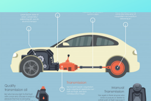 how to check Ford focus transmission fluid